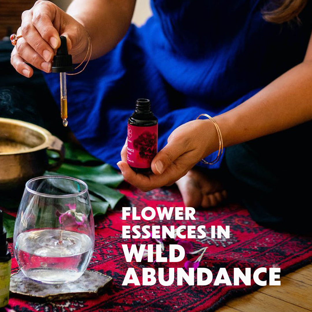 Flower Essences for Wild Abundance