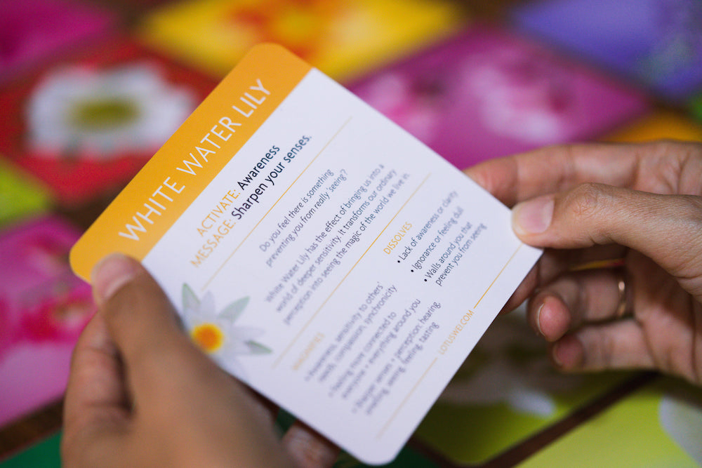Flowerevolution flower essences card deck with special messages