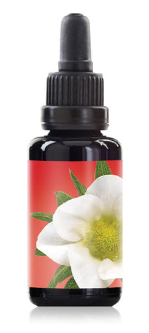 strawberry blossom LOTUSWEI flower essences