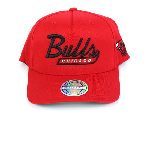 Mitchell and Ness Chicago Bulls Script N Tail PP Flex 110 Snapback