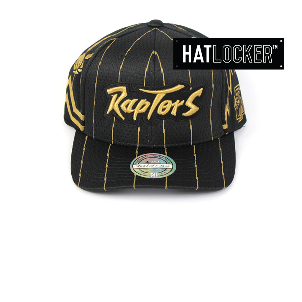 Mitchell & Ness Toronto Raptors City Series 110 Curved Snapback
