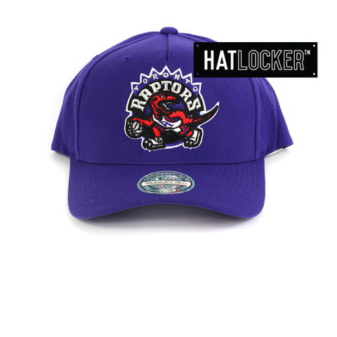 Mitchell & Ness Toronto Raptors 110 Retro Team Curved Snapback Hat