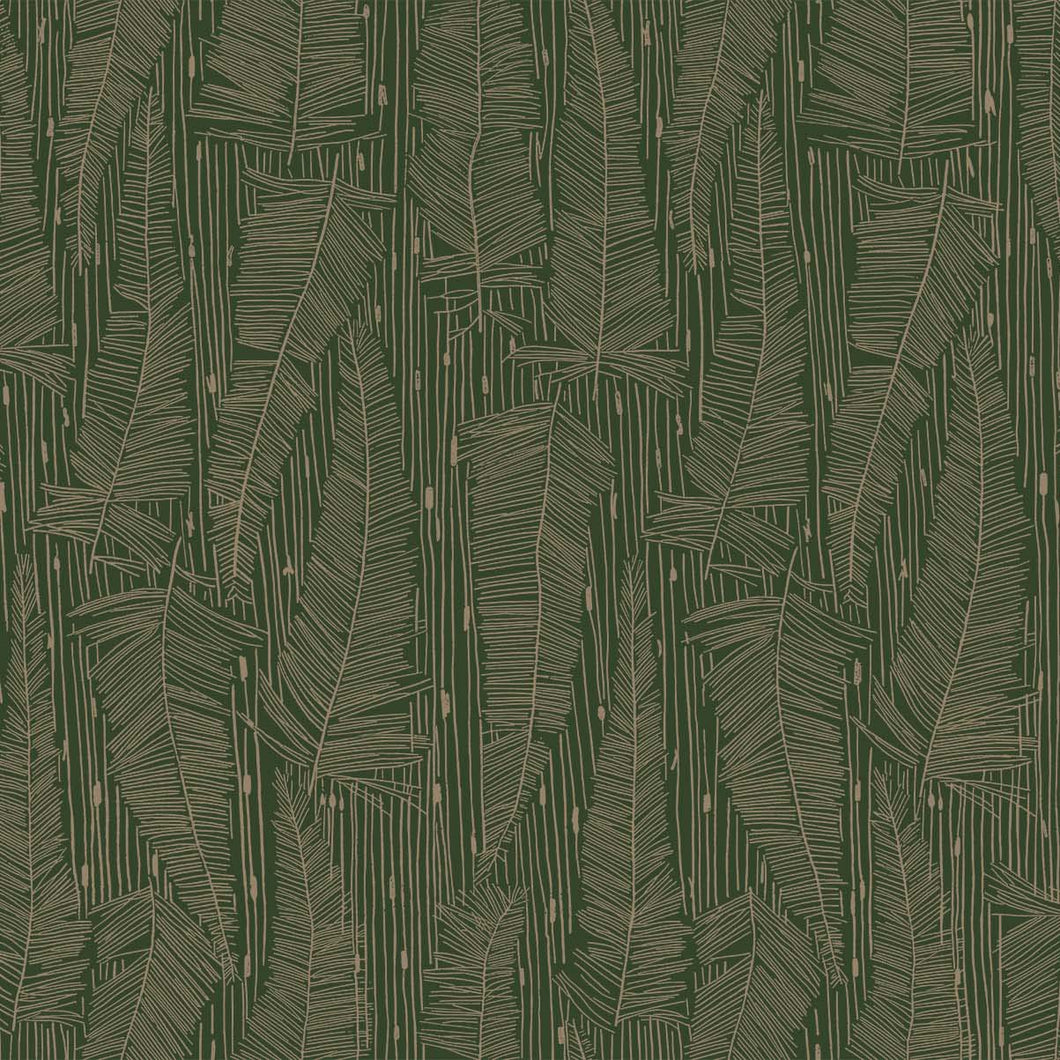 Georgia Avenue Feathers Wallpaper in Moss Green