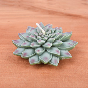 Realistic Succulent Candle