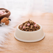 Load image into Gallery viewer, Spoof Dog Food Bowl Scented Candle for April Fools Day , Your Dog Birthday