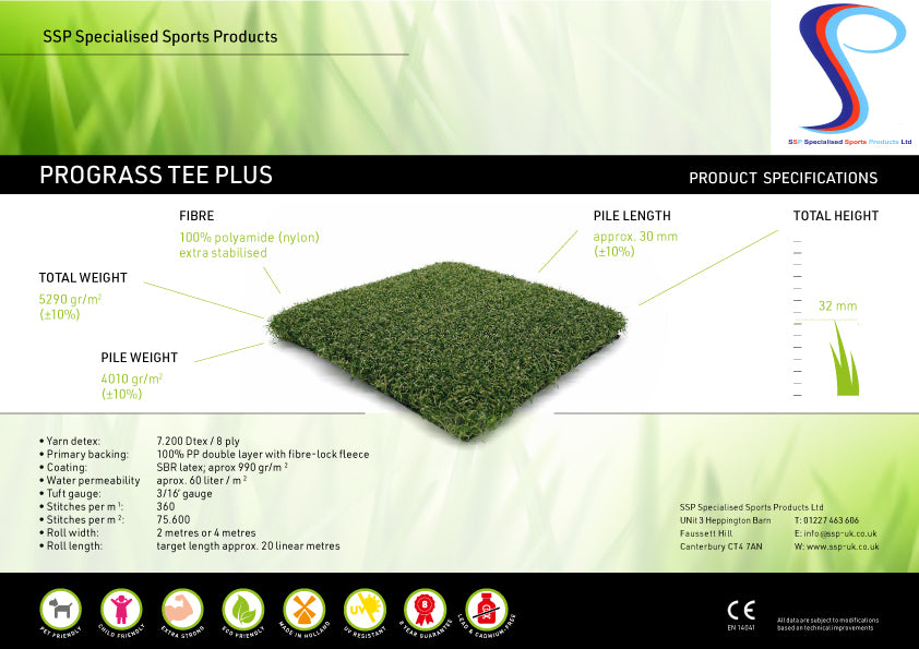 Winter and Practice Tee artificial grass