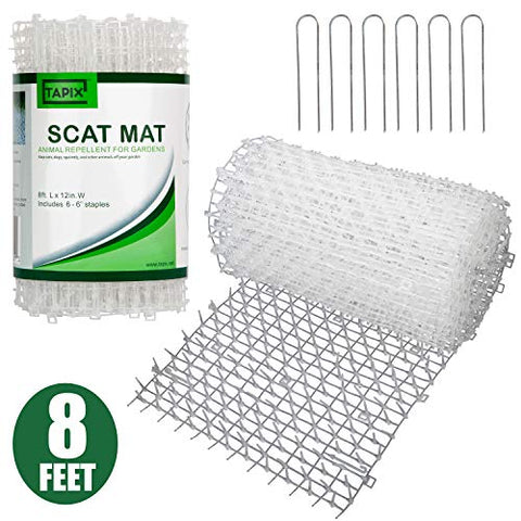 Cat Scat Mat Clear Anti-cat Network with Spikes for Indoor and Outdoor 8 feet x 12 inches with 6 Staples