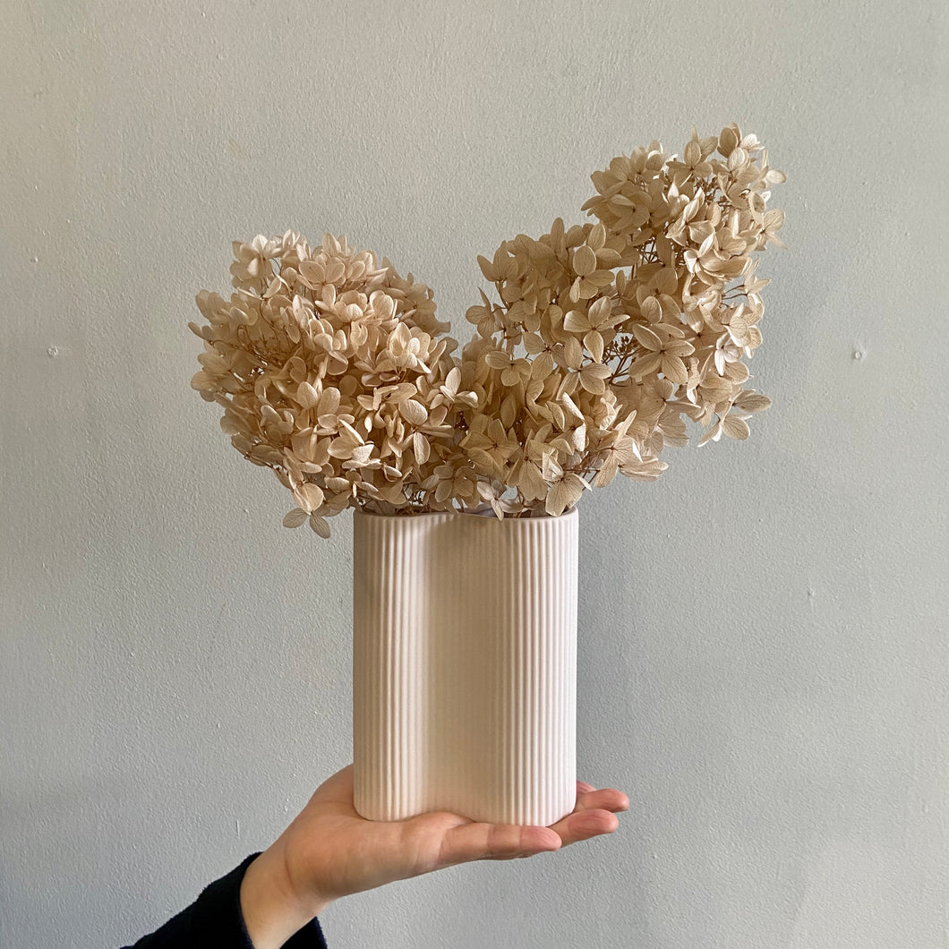 Ribbed Infinity Vase with Hydrangea (S)