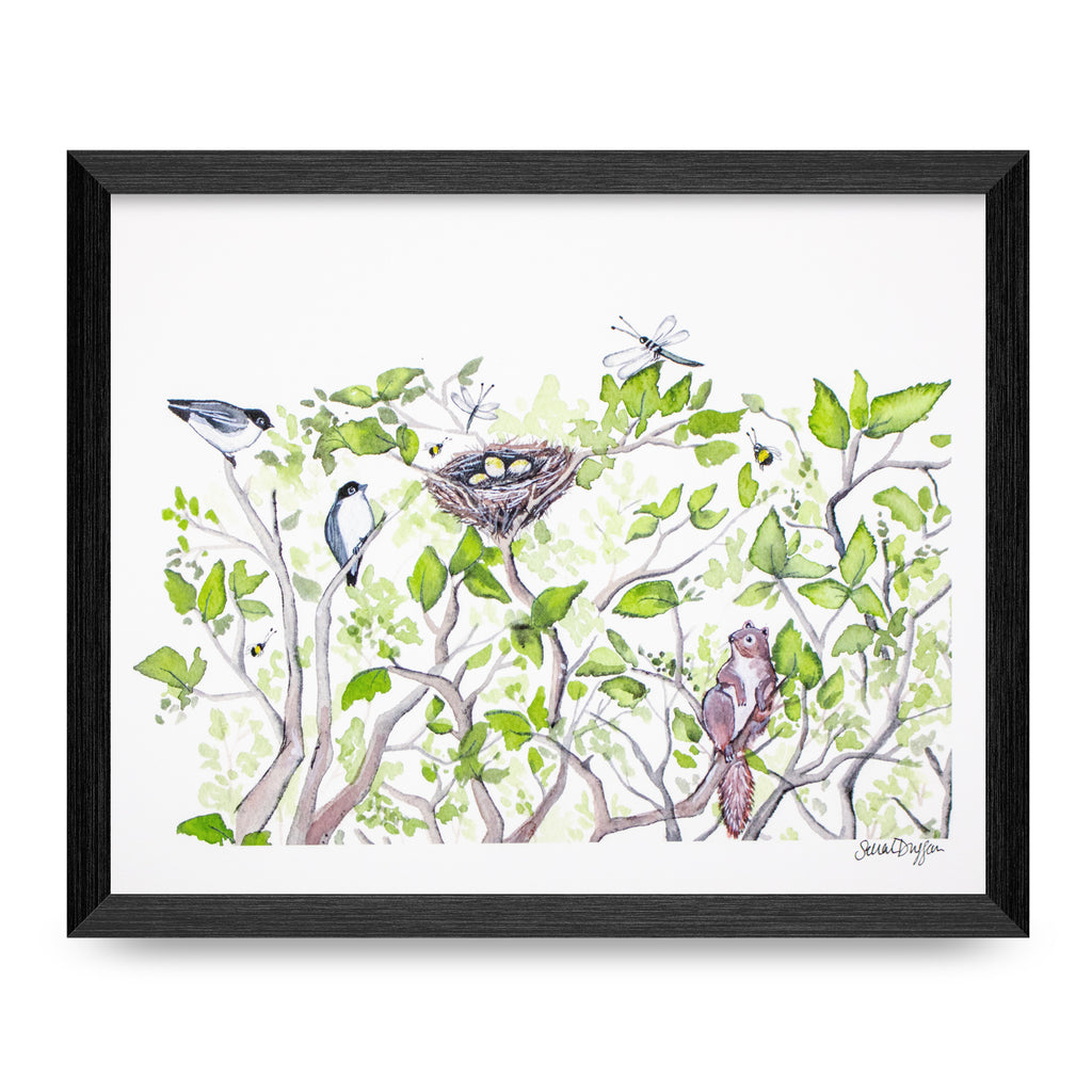 Chickadees In The Hedge 8x10 Print