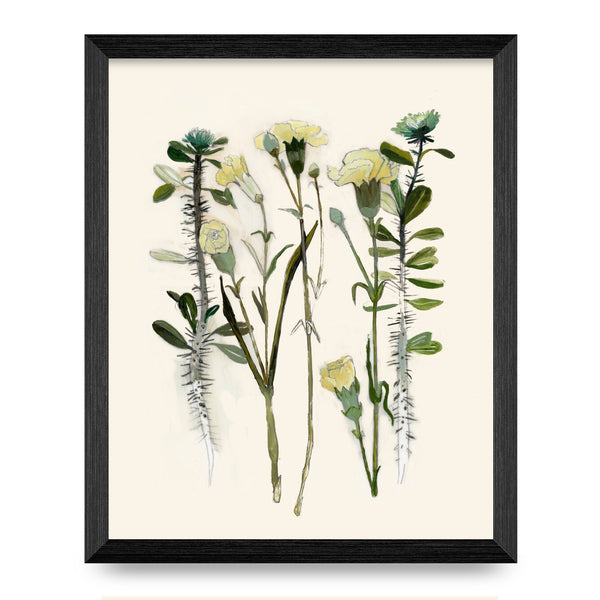 Carnation & Thorny Rose 8x10 Print