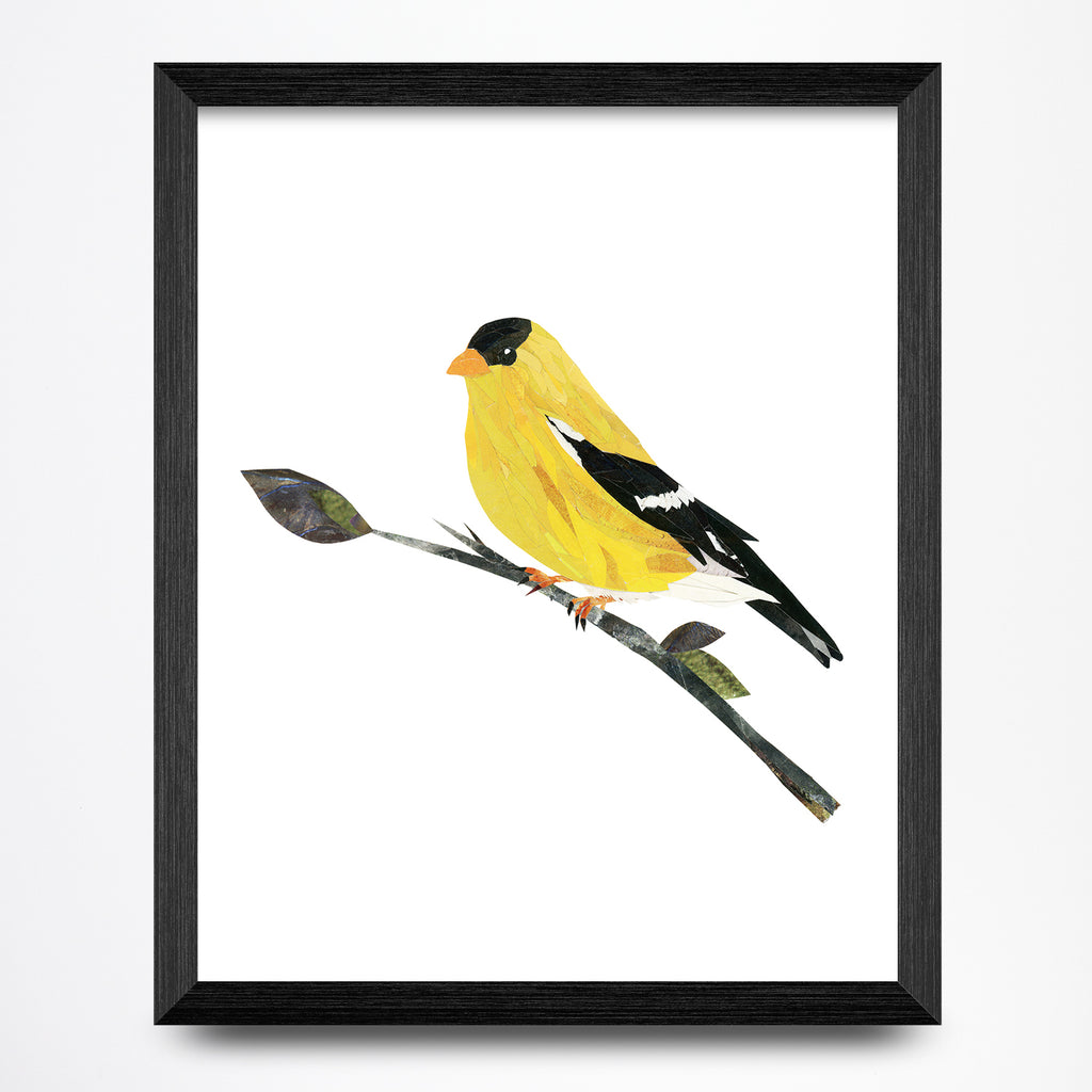 Goldfinch Collage Print