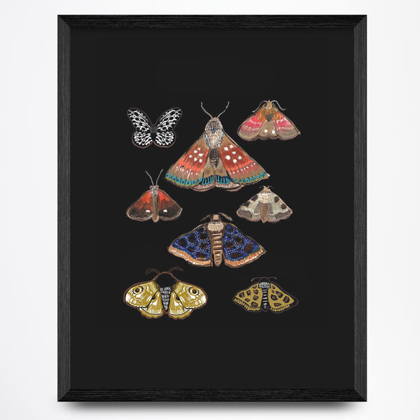 Moths on Black Print