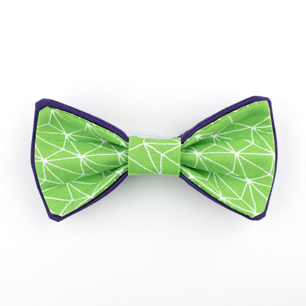 Lime & Purple Bow Tie