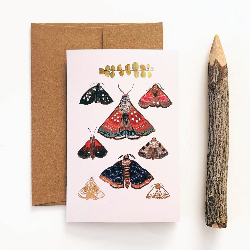 Moth/Cream Card