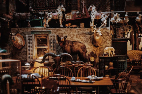 Taxidermied animals and antiques in a room.