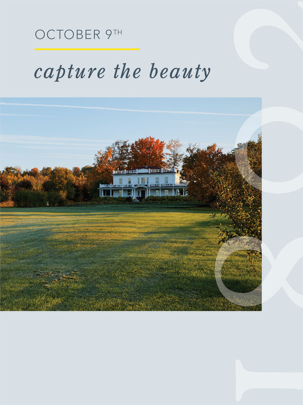 Capture the Beauty – October 9, 2021