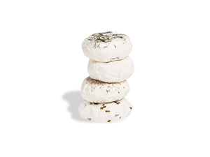 Chevre Sampler Set of 4 Cheeses
