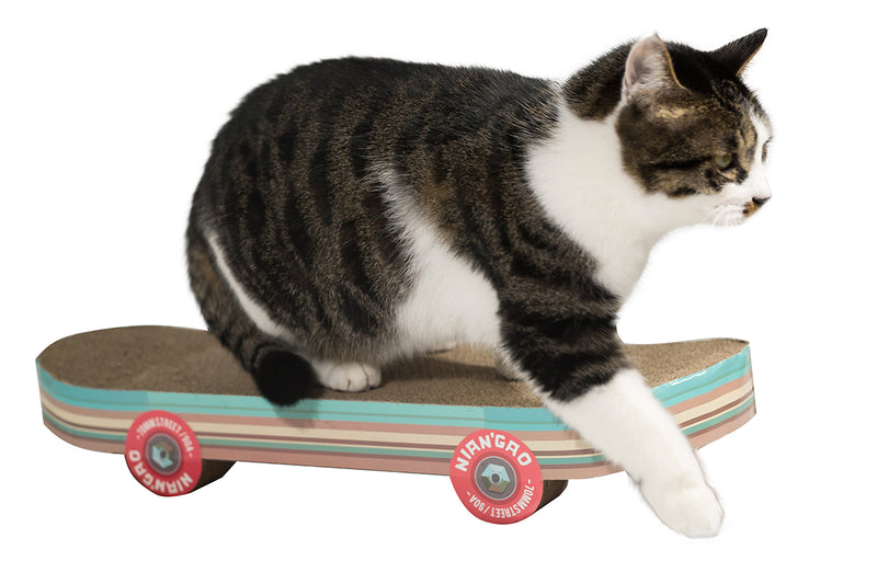 Pawnie Skateboard Shaped Cat Scratcher and Resting Lounge Pad