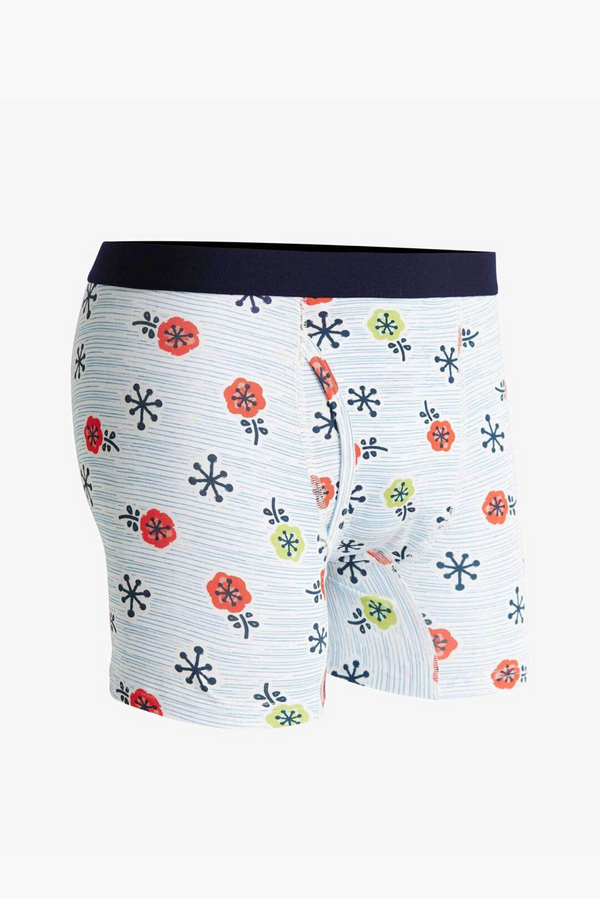 Men's Nifty Modal Boxer Briefs | Blue Heaven | Richer Poorer - Manready Mercantile