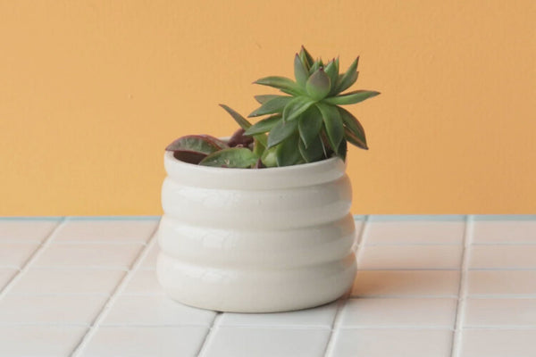 Marshmallow Planter | Nightshift Ceramics