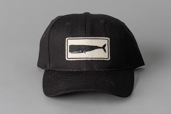 Whale Patch Hat | Black | Mollusk Surf Shop