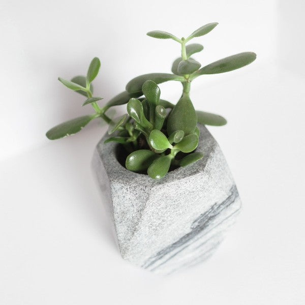Geometric Black Stone Planter