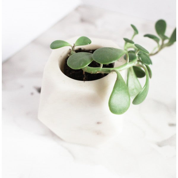 Geometric White Stone Planter
