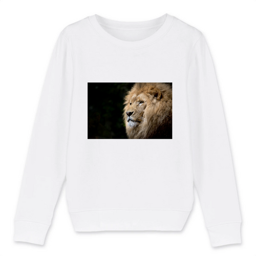 Sweats Enfant Lion