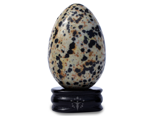 Dalmatian Jasper Yoni Egg Playful Joy