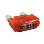 10 Amp | Red (5pc)