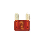 40 Amp | Orange (3pc)