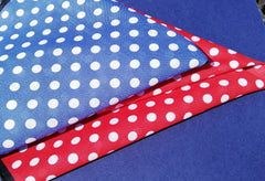 NEW Box of 2 Fine Swiss Lawn Cotton Spotted Handrolled Ladies Handkerchiefs