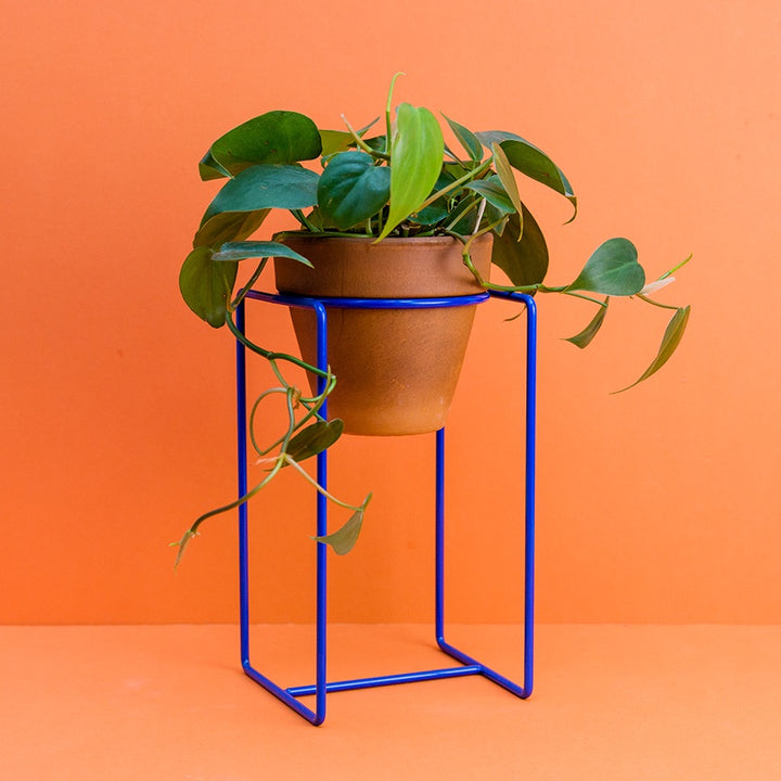 Desk Planter - Blue