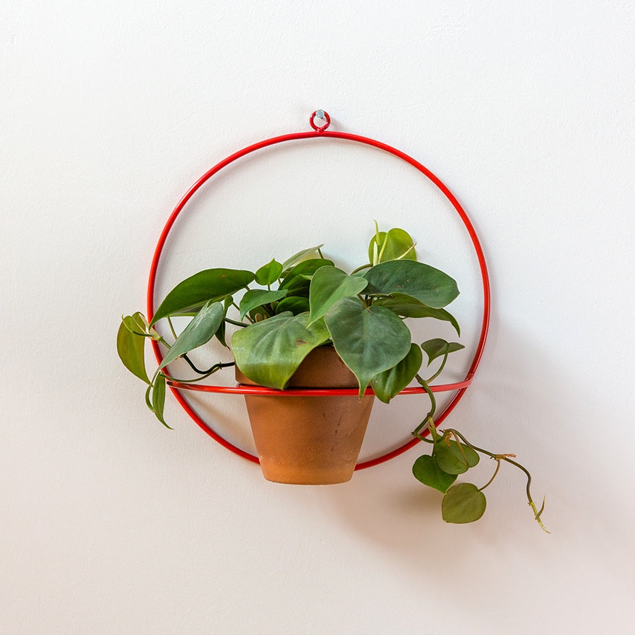 Circle Wall Planter - Red