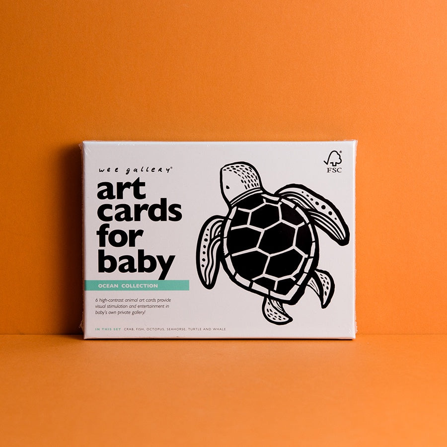 Art Cards for Baby - Ocean
