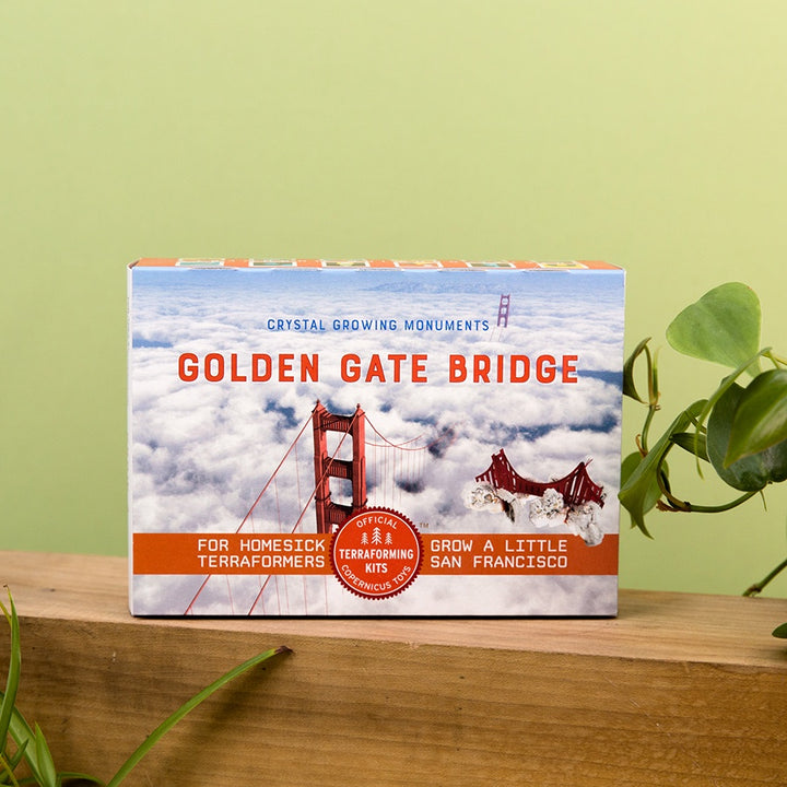 Crystal Growing: Golden Gate Bridge