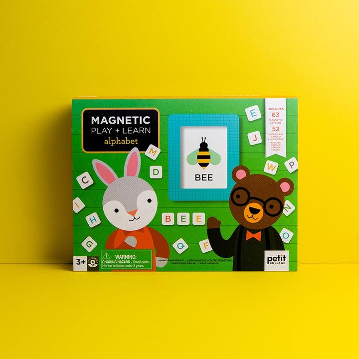 Alphabet Magnetic Play & Learn set