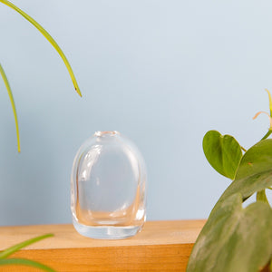 Pebble Bud Vases - Tall Clear