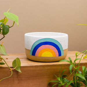 Medium Rainbow Planter - Classic