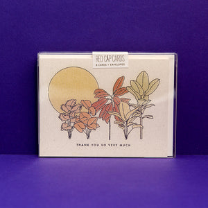 Desert Plants Boxed Set