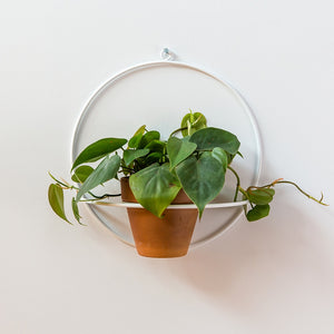 Circle Wall Planter - White