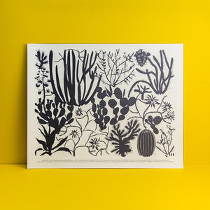 A print of 10 kids of cacti in black