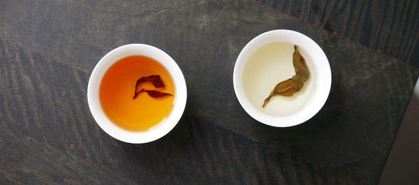 two cups of oolong gin