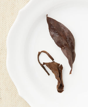 aged oriental beauty oolong tea open leaf