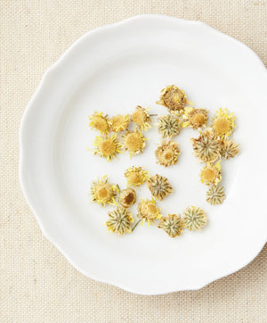 Wild Chrysanthemum herbal tea dry flower