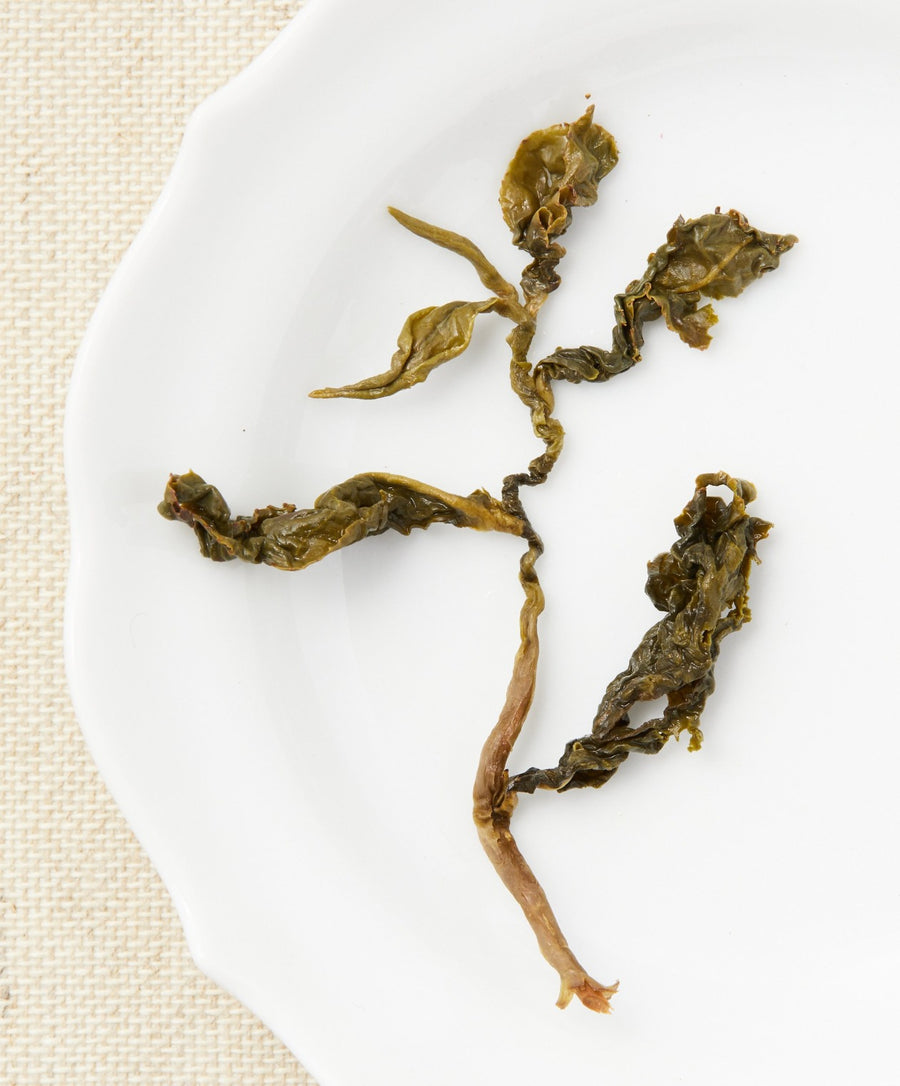 dong ding oolong tea open leaf