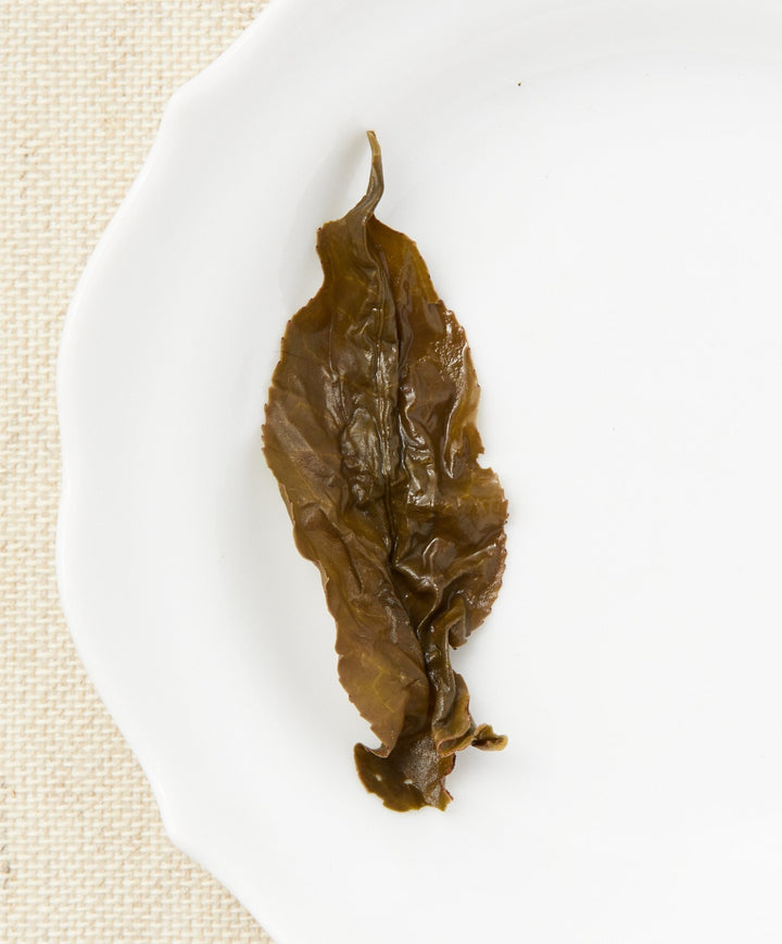 alishan oolong tea open leaf
