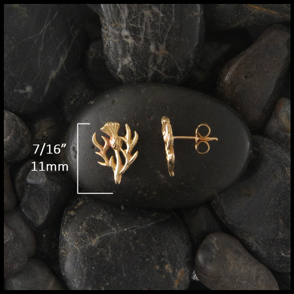 Thistle post earrings in 14K Gold