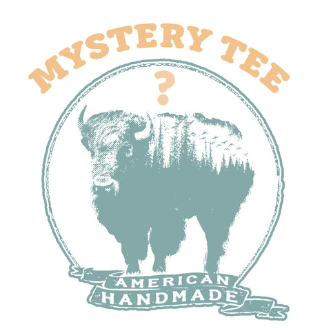 Unisex MYSTERY TEE! (ships free with another item) - Zen Threads