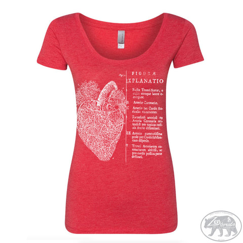 Women's Anatomical HEART Tri-Blend Scoop Neck Tee T Shirt